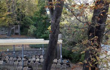 Unser Antrag zum Baumbestand im Generationenzentrum Heslach