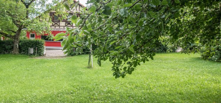 Ortsvereinsversammlung im Walter Mann Haus / Waldheim Heslach